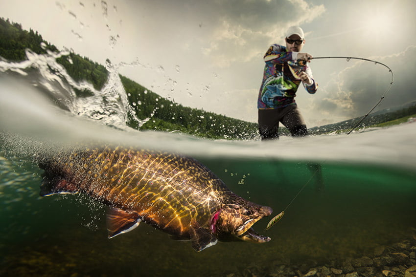 The Best Time To Go Fishing in Orlando Florida